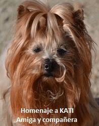 homenaje a Kati