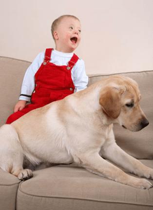 perros y niños-4